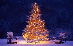 mooie-brandende-kerstboom-buiten-in-de-sneeuw-hd-kerst-wallpaper