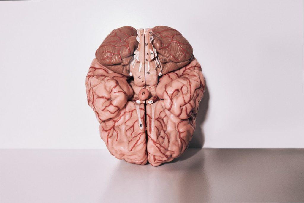 Evenwichtsstoornis behandeling bij Chiropraktijk Blaauw in Gouda