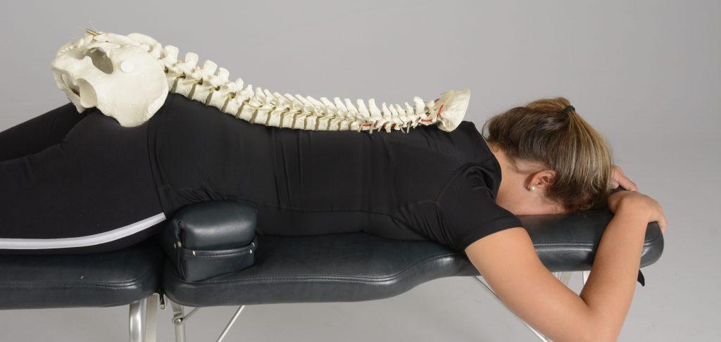 Functie wervelkolom uitgelegd bij vrouw die op buik ligt bij Chiropractie Blaauw in Gouda